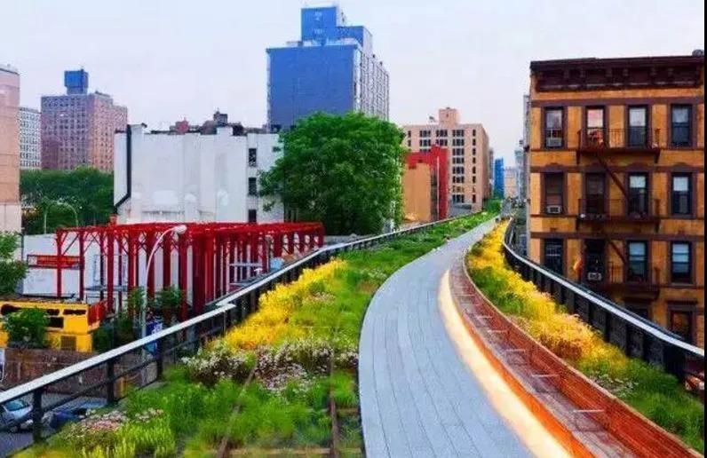 纽约高线公园